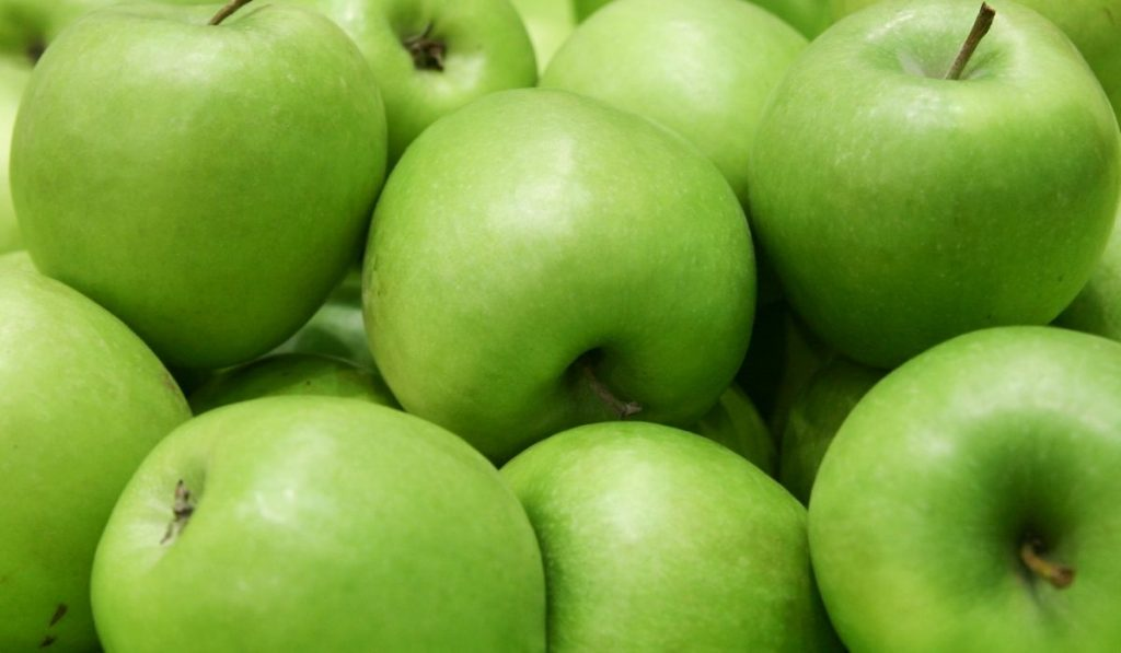 Are Green Apples Good for Guinea Pigs